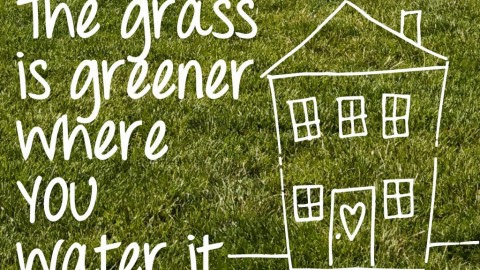 The grass is not greener on the other side of the fence